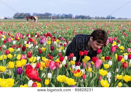 Woman Smelling Flowers In A Dutch Tulip Field