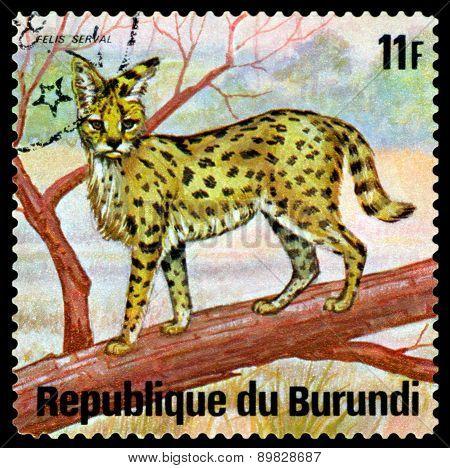 Vintage  Postage Stamp. Felis Serval. Animals Burundi.
