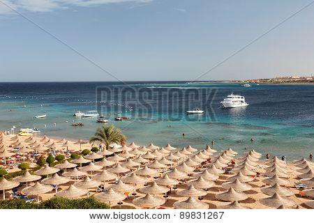 Umbrellas On The Beach, Makadi Bay, Egypt