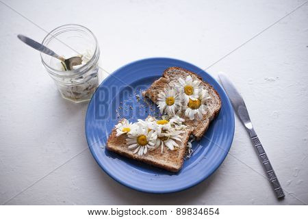 Daisies On Toast