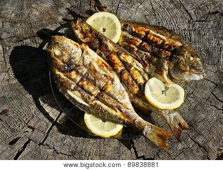 Seabass and Dorado fish grilled on wooden table