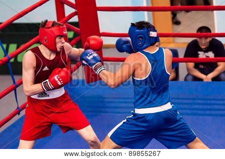 Fight Boxers, Orenburg, Russia