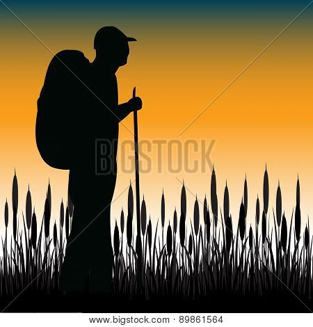 Tourist In Field