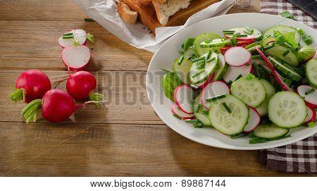Fresh Healthy Salad With Radish And Cucumbers