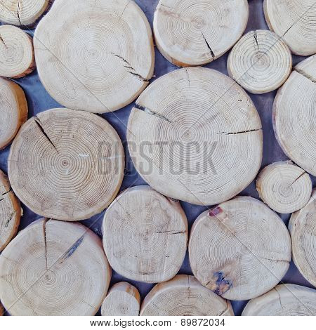 cut logs close up