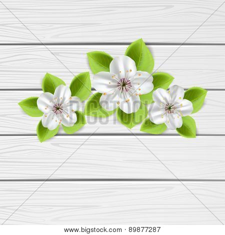 Three Flowers On Wooden Background