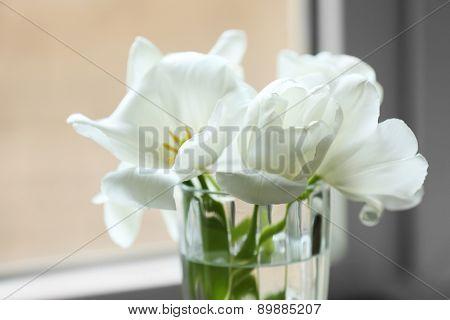 Beautiful tulips in vase close up