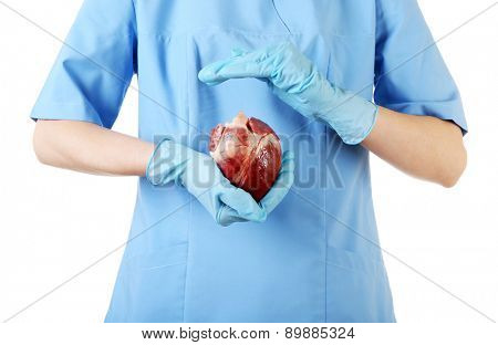 Heart in doctor hands isolated on white