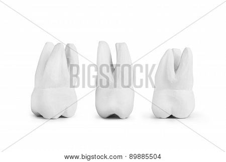 Teeth Made Of Gypsum Isolated On White
