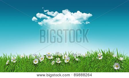 3D render of daisies in grass with a sunny rain cloud