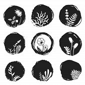 picture of taint  - Vector ink sketch spots with hand drawn floral elements - JPG
