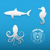 picture of blue animal  - Graphic set of various sea animals white contours on a blue background with logo - JPG