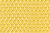 foto of foundation  - Close up of wax coated plastic honeycomb foundation - JPG
