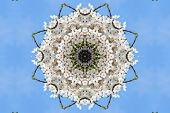 stock photo of kaleidoscope  - kaleidoscopic floral pattern abstract background for design - JPG