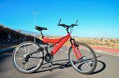 pic of suspension  - Modern Red Full Suspension Mountain Bike MTB Bicycle - JPG