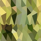 picture of khakis  - Low polygon style illustration of dark khaki abstract geometric background - JPG