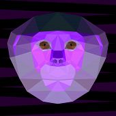 stock photo of marmosets  - Abstract purple colored polygonal geometric red - JPG