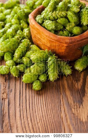 Fresh green hops on a wooden desk, served in bowl. Low depth of focus