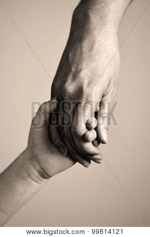Adult or parent holding the hand of a small child