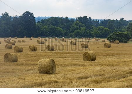 Hay bails sit in a farmers' field