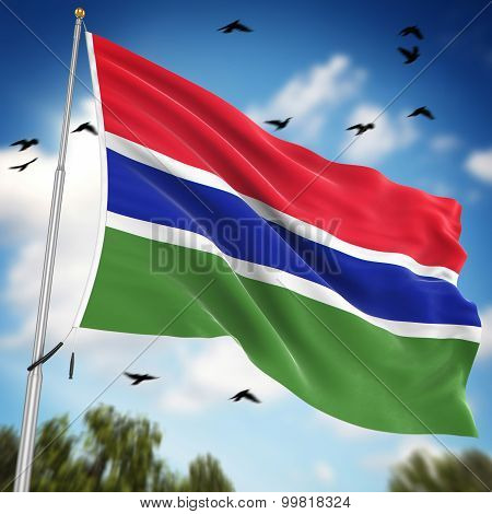 Flag Of The Gambia