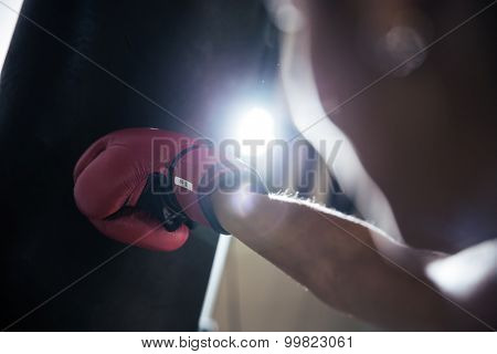 Closeup portrait of a female hand in boxing glove