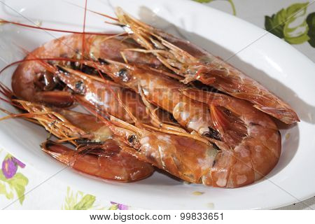 Fresh Red Prawns