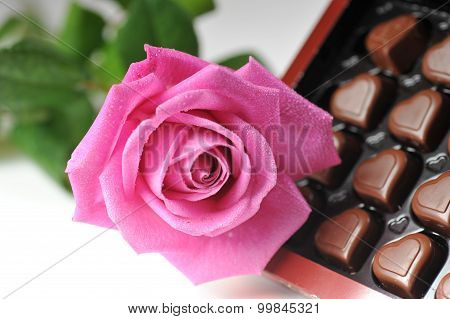 Chocolate  And Pink Rose
