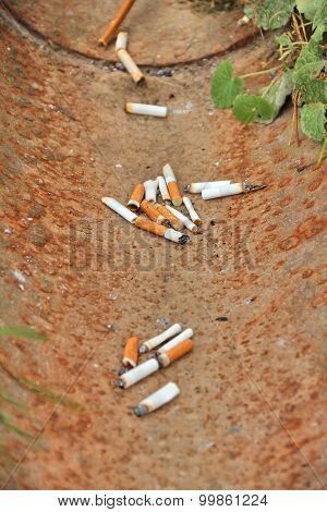 Cigarette Butts, Thrown Into Drainage Gutter