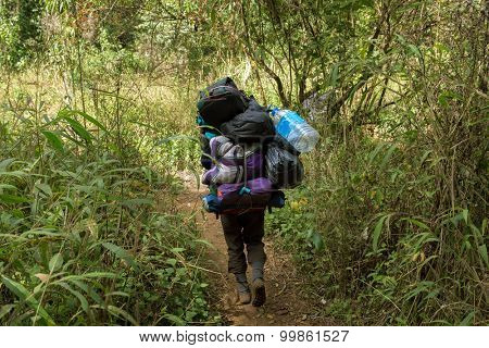 Full loaded porter in a mountain jungle trekking in Thailand