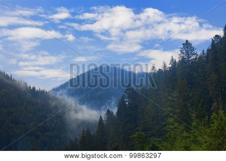 Carpathian Mountains, Shrouded In Small Clouds