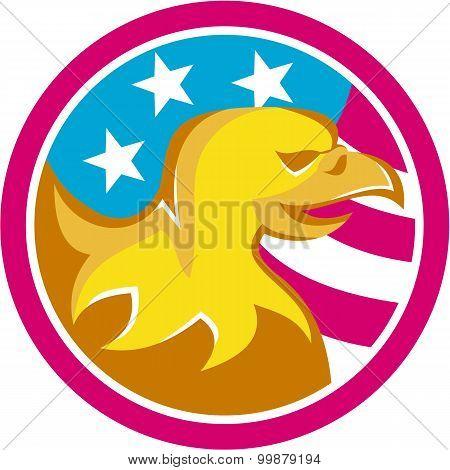American Bald Eagle Usa Flag Circle Retro
