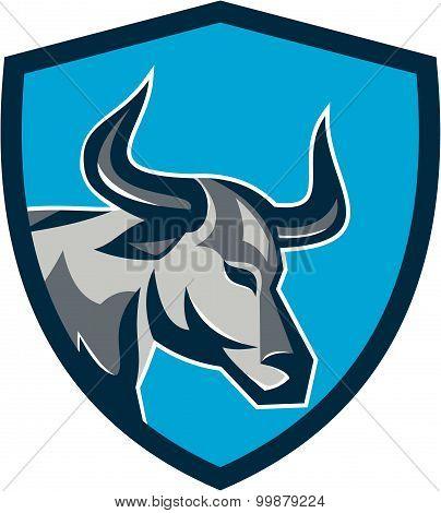 Texas Longhorn Bull Head Shield Retro