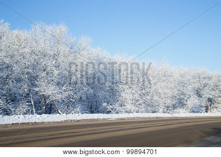 Winter Landscape With The Roadside, Trees Covered With Snow And Blue Sky