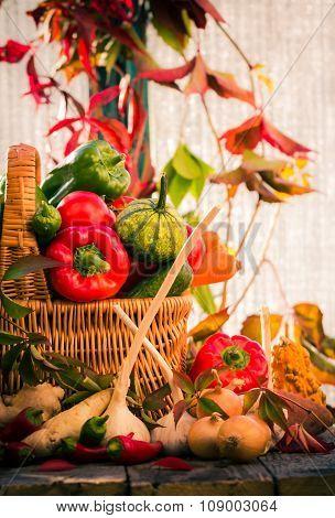 Basket Full Fresh Vegetables Rural Setting