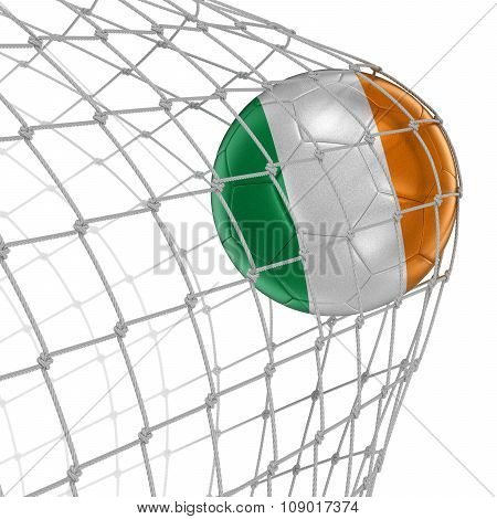 Irish soccerball in net