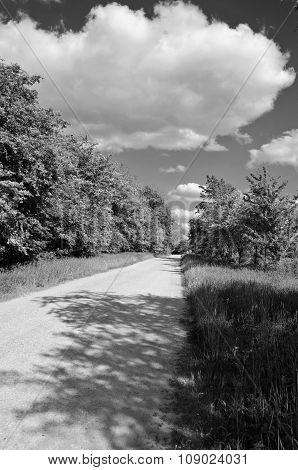 Black And White Landscape With A Road On Sunny Cloudy Day