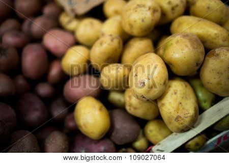 Potatoes In Florence
