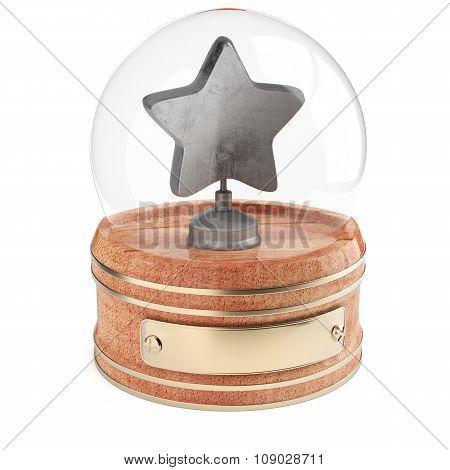 Snpw Globe With Silver Star