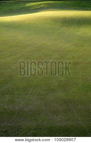 Grass On A Golf Course