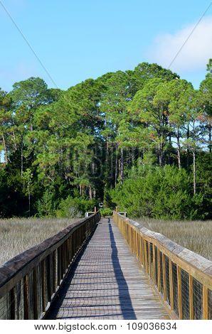 Walkway on the marshland Florida