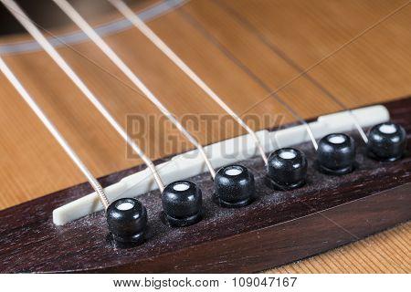 Guitar Saddle And Bridge