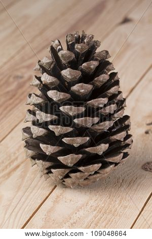 Pinecone On Wooden Background