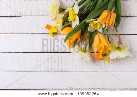 Fresh  Spring Yellow Narcissus And  Tulips Flowers