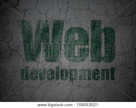 Web design concept: Web Development on grunge wall background