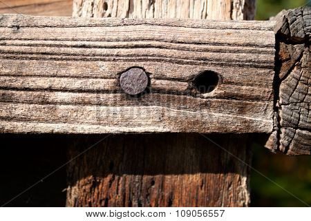 Nail in wood surface