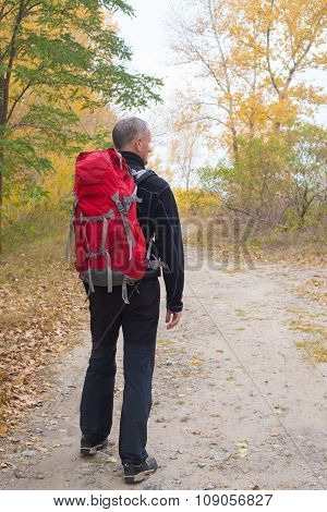 Hiker Man With Backpack Walks Through The Colorful Autumn Forest