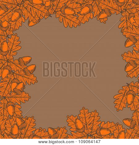 Illustration Of Leaf With Acorn