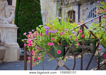 Flowerbed On A Front Of A Stone Building In France