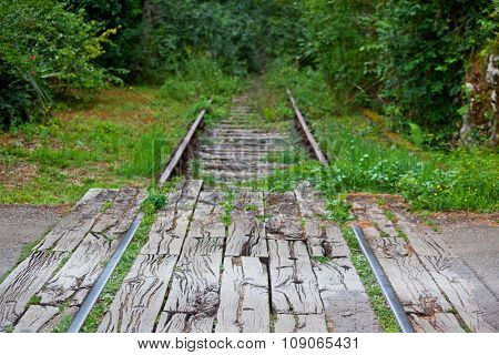 Old Railroad In A Forest